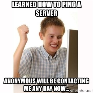 Computer kid - Learned how to ping a server Anonymous will be contacting me any day now...