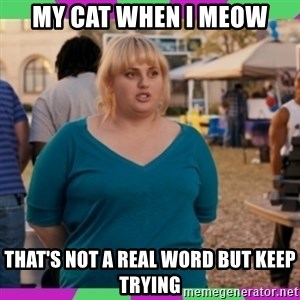Fat Amy Meme - My cat when I meow That's not a real word but keep trying