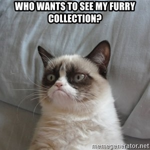Grumpy cat 5 - Who wants to see my furry collection?