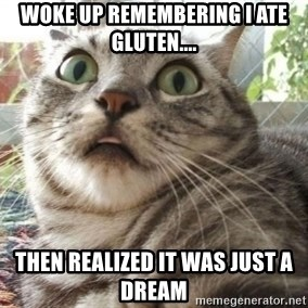 scared cat - Woke up remembering I ate gluten.... Then realized it was just a dream