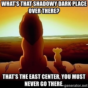 simba mufasa - What's that shadowy dark place over there?  That's the East Center, you must never go there.
