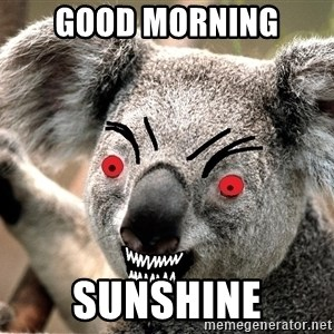 Abortion Koala - Good morning sunshine