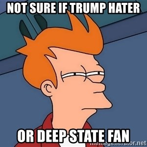 Futurama Fry - Not sure if Trump Hater or Deep State Fan