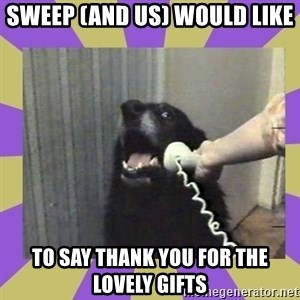 Yes, this is dog! - Sweep (and us) would like to say thank you for the lovely gifts