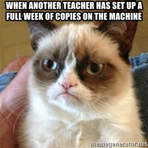 Grumpy Cat  - When another teacher has set up a full week of copies on the machine