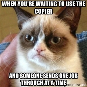Grumpy Cat  - When you're waiting to use the copier and someone sends one job through at a time
