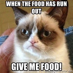 Grumpy Cat  - When the food has run out  Give me food!