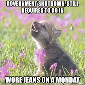 Baby Insanity Wolf - Government Shutdown, still requires to go in Wore jeans on a Monday