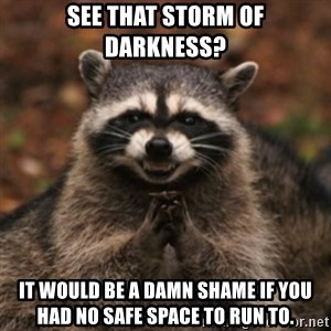 evil raccoon - See that storm of darkness? it would be a damn shame if you had no safe space to run to.