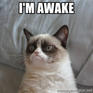 Grumpy cat good - I'm awake