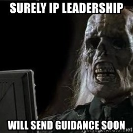 OP will surely deliver skeleton - surely ip leadership  will send guidance soon