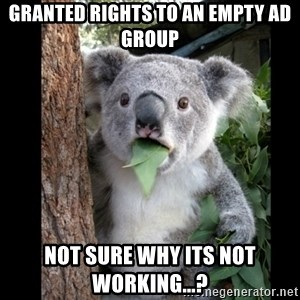 Koala can't believe it - Granted rights to an empty AD group not sure why its not working...?