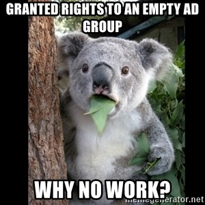 Koala can't believe it - granted rights to an empty ad group why no work?