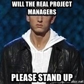 Eminem - will the real project managers please stand up