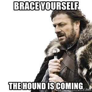 Winter is Coming - brace yourself the hound is coming