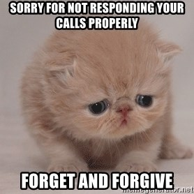 Super Sad Cat - Sorry for not responding your calls properly Forget and forgive