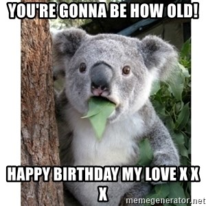 surprised koala - You're gonna be how old! Happy birthday my love x x x