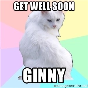 Beauty Addict Kitty - get well soon ginny