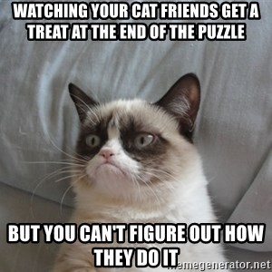 Grumpy cat good - watching your cat friends get a treat at the end of the puzzle but you can't figure out how they do it