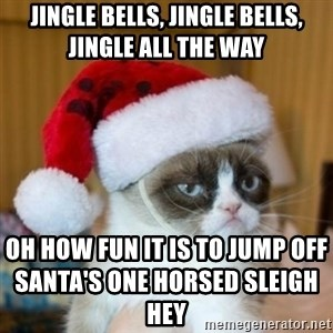 Grumpy Cat Santa Hat - jingle bells, jingle bells, jingle all the way  oh how fun it is to jump off Santa's one horsed sleigh                                                                   HEY