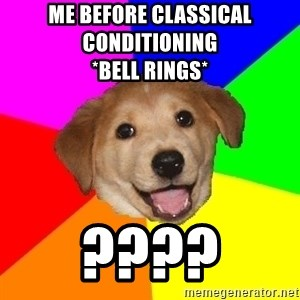 Advice Dog - Me before classical conditioning                           *Bell rings* ????