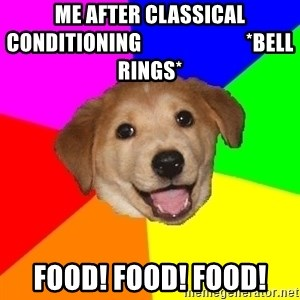 Advice Dog - Me after classical conditioning                         *bell rings* food! food! food!