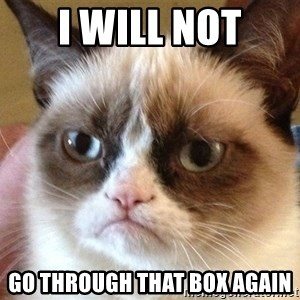 Angry Cat Meme - I will not go through that box again