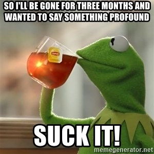 Kermit The Frog Drinking Tea - So I'll be gone for three months and wanted to say something profound suck it!