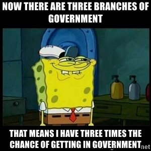 Don't you, Squidward? - Now there are three branches of government  That means I have three times the chance of getting in government