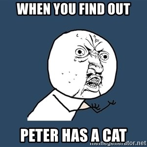 Y U No - When You Find Out Peter has a cat