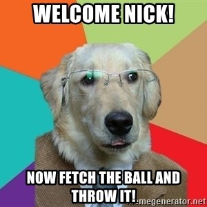 Business Dog - Welcome Nick! Now fetch the ball and throw it!