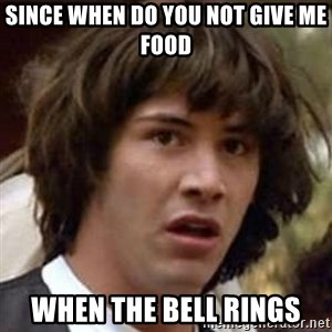 Conspiracy Keanu - since when do you not give me food  when the bell rings