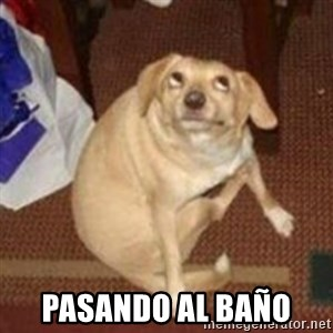 Oh You Dog - pasando al baño