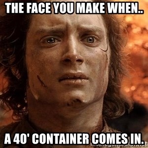 Frodo  - The face you make when.. a 40' container comes in.