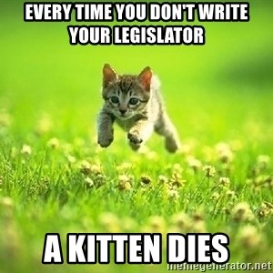 God Kills A Kitten - Every time you don't write your legislator A kitten dies