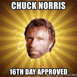Chuck Norris Advice - Chuck Norris   16th Day Approved