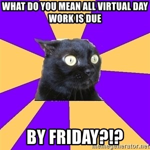 Anxiety Cat - What do you mean all Virtual Day work is due  by Friday?!?