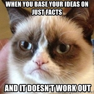Angry Cat Meme - when you base your ideas on just facts  and it doesn't work out