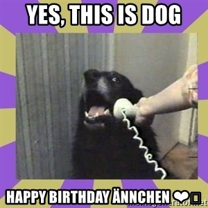 Yes, this is dog! - Yes, this is dog Happy Birthday Ännchen ❤️