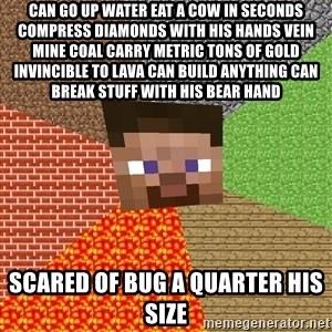 Minecraft Guy - can go up water eat a cow in seconds compress diamonds with his hands vein mine coal carry metric tons of gold invincible to lava can build anything can break stuff with his bear hand scared of bug a quarter his size