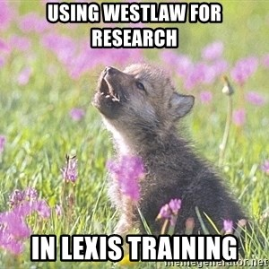 Baby Insanity Wolf - Using Westlaw for research in Lexis Training