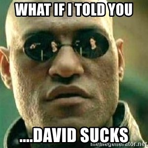 What If I Told You - what if i told you ....david sucks