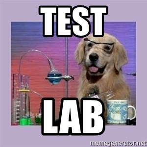 Dog Scientist - TEST LAB