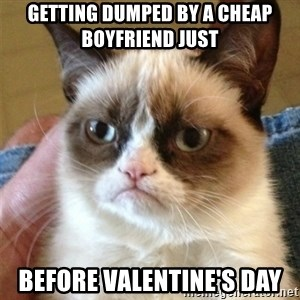 Grumpy Cat  - Getting Dumped By a cheap boyfriend just  before Valentine's Day