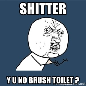 Y U No - Shitter y u no brush toilet ?