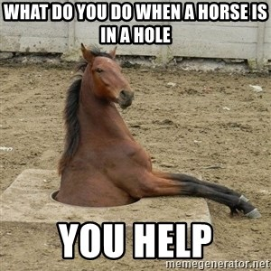 Hole Horse - what do you do when a horse is in a hole you help