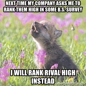 Baby Insanity Wolf - next time my company asks me to rank them high in some b.s. survey i will rank rival high instead