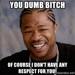 Yo Dawg - You dumb bitch  Of course I don't have any respect for you!