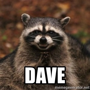 evil raccoon - dave