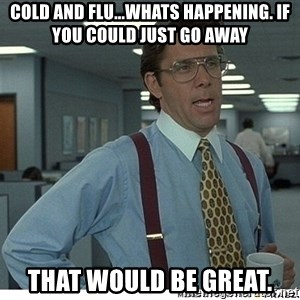 That would be great - Cold and flu...whats happening. If you could just go away That would be great.